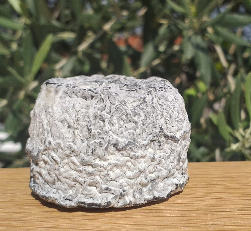pur chèvre, fromage, local, artisanal, productueur, IGP
